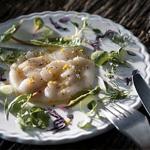 Carpaccio de noix de Saint-Jacques à l'orange et feuilles de printemps – Les recettes de Flo